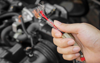 Some tips for Reno and Sparks drivers can keep rodents from sending their car to auto repair shop.