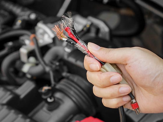 rat damaged wires how to prevent rodents from eating your vehicle's wires wayne's