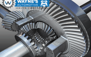 differential cutaway